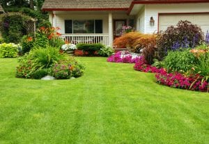 Valle Crucis lawn care